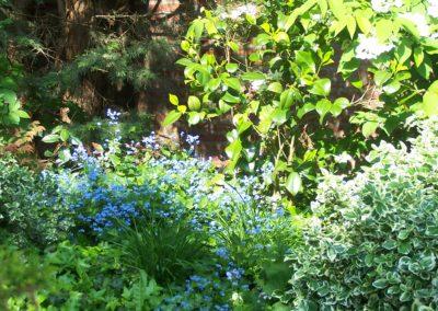 de-vries-groenwerk-beplanting-1