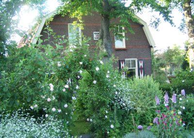 de-vries-groenwerk-beplanting-11