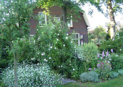 de-vries-groenwerk-beplanting-13