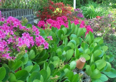de-vries-groenwerk-beplanting-3