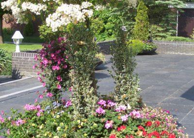 de-vries-groenwerk-beplanting-5