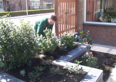 de-vries-groenwerk-beplanting-51