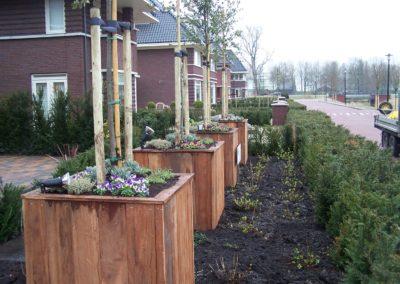 de-vries-groenwerk-beplanting-69