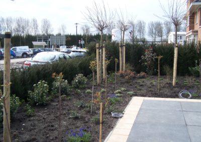de-vries-groenwerk-beplanting-75