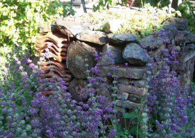 wilde bloemen tuin 005